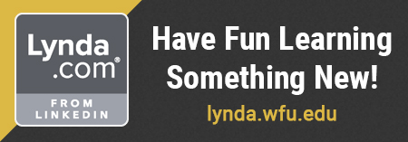 Have fun learning something new - Lynda banner