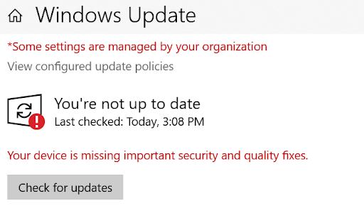 Screenshot of Windows Update
